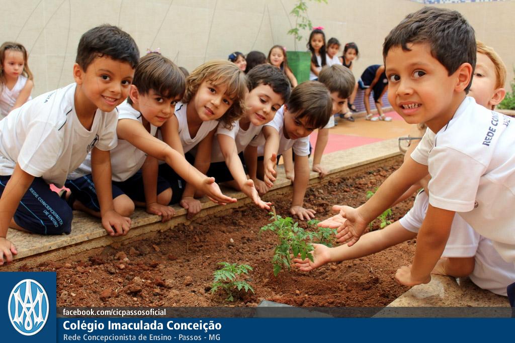 Você está vendo imagens do artigo: Jardim: Horta, espaço de aprendizagem